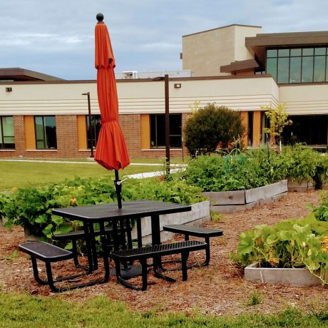 image of Community Gardens 2018 .