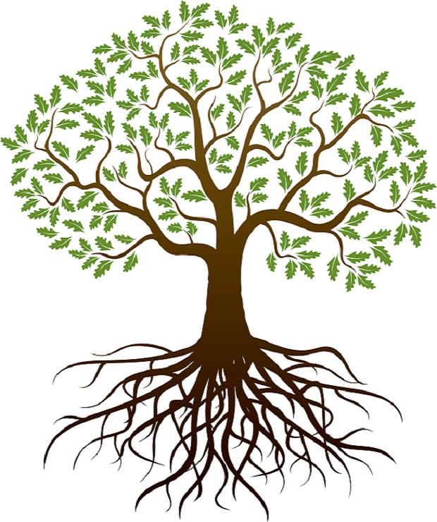 image of simple health tree